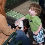 Nicole instructs Collin (Sara's son) to be gentle when petting the doggies!