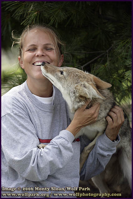 Rebecca and Coyote Pup